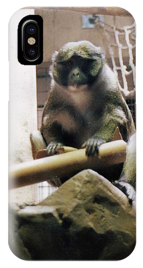 Monkey IPhone Case featuring the photograph Just Monking Around by Crystal Webb