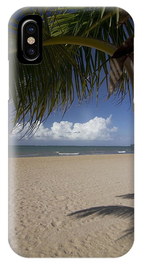 Palm Tree IPhone X / XS Case featuring the photograph Just You And The Beach by Sven Brogren
