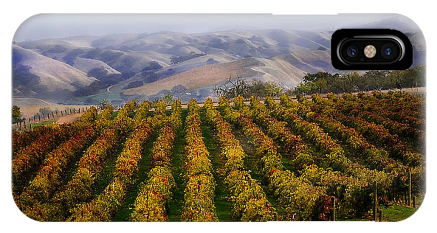 Vineyards IPhone X Case featuring the photograph Kalthoff Common Vineyard by Karen W Meyer