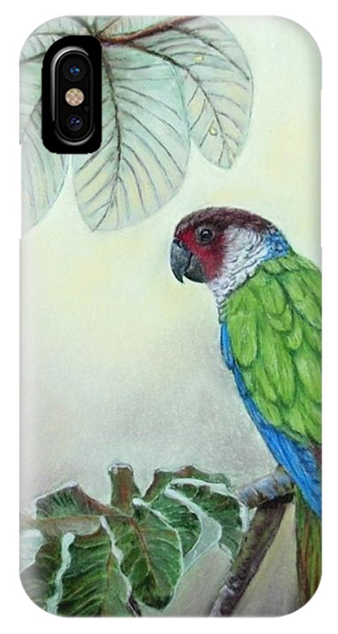 Wildlife IPhone Case featuring the painting Kasanga Bajo El Guarumo by Ceci Watson