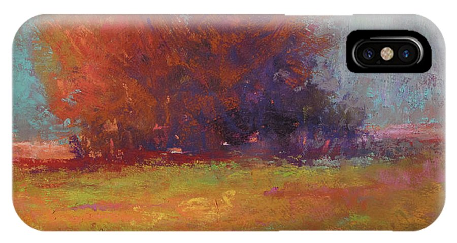 Landscapes IPhone X Case featuring the painting Keene Valley Field by Susan Williamson