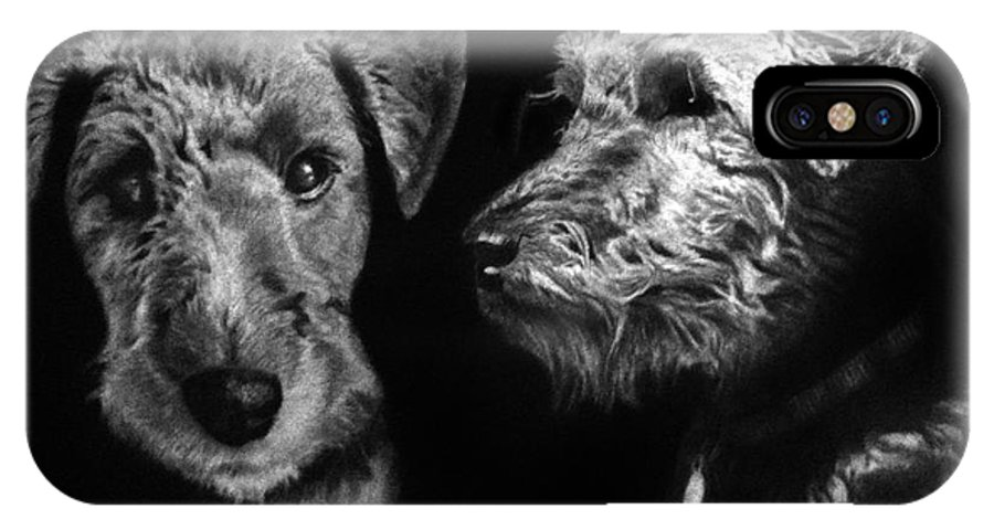 Welsh Terrier IPhone X Case featuring the drawing Keeper The Welsh Terrier by Peter Piatt