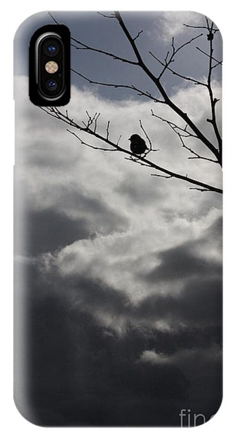 Storm IPhone X Case featuring the photograph Keeping Above The Storm by Carol Groenen