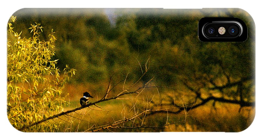 Landscape IPhone Case featuring the photograph King Fisher by Steve Karol