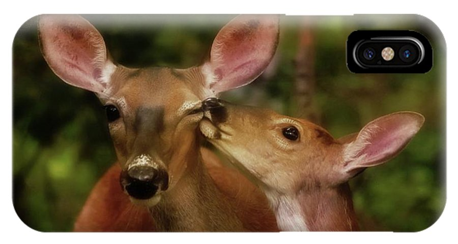 Deer IPhone X Case featuring the photograph Kisses For Mom by Lisa Hurylovich