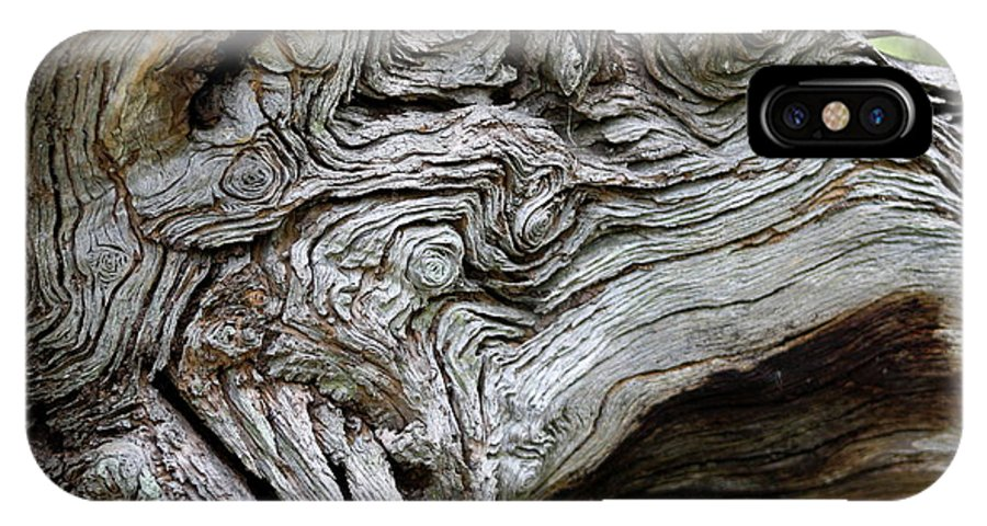 Knotty Tree IPhone X Case featuring the photograph Knotty Tree by Christiane Schulze Art And Photography
