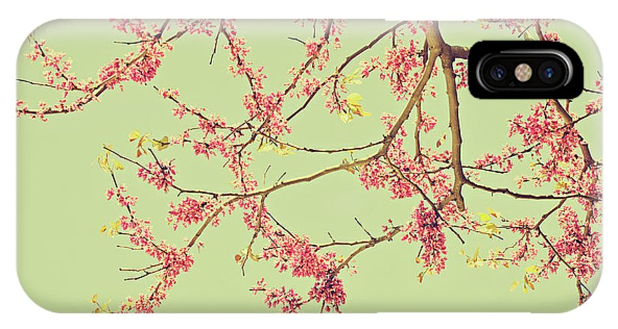 Pink IPhone X / XS Case featuring the photograph Le Rose' Arbre by Angela King-Jones