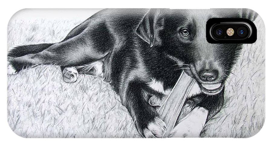Dog IPhone X Case featuring the drawing Labrador Samy by Nicole Zeug