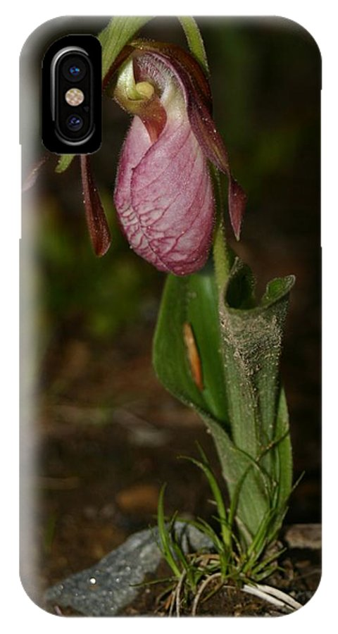 Nature IPhone X Case featuring the pyrography Lady Slipper 1 by Robert Morin