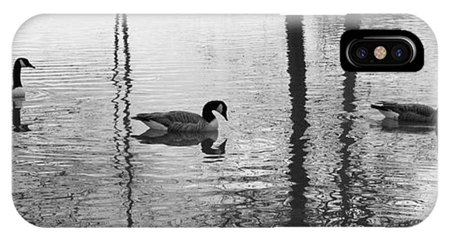 Water IPhone X / XS Case featuring the photograph Geese At Evening Light #1 by Dan Farmer