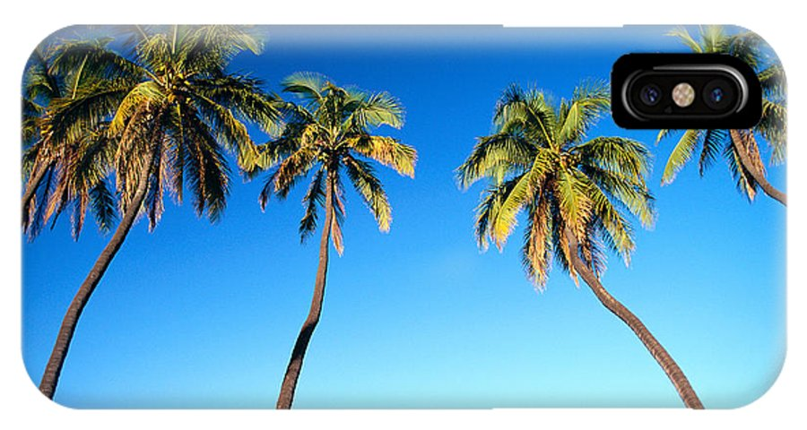 Bark IPhone X Case featuring the photograph Lahaina Palms by Carl Shaneff - Printscapes