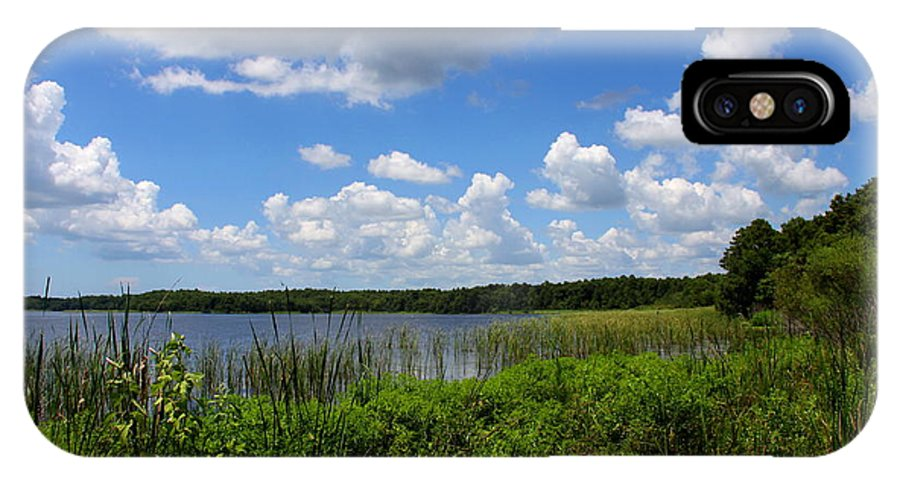Lake Tarpon IPhone X Case featuring the photograph Lake Tarpon by Barbara Bowen