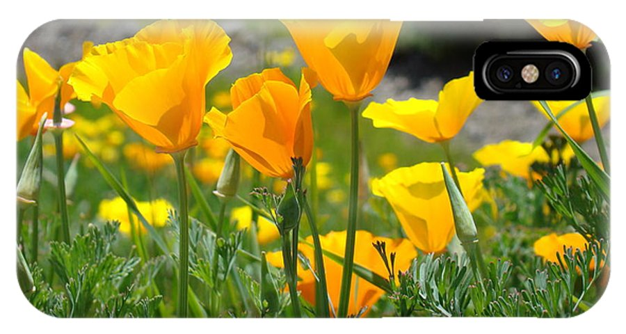 �poppies Artwork� IPhone X Case featuring the photograph Landscape Poppy Flowers 5 Orange Poppies Hillside Meadow Art by Baslee Troutman