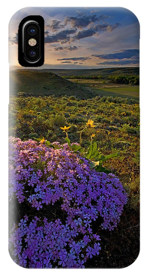 Wildflowers IPhone X Case featuring the photograph Last Light of Spring by Mike Dawson