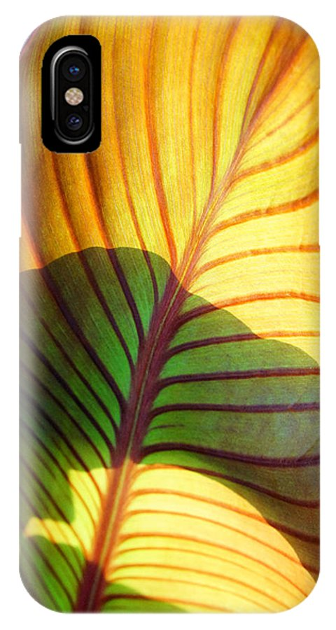Everett Spruill IPhone X / XS Case featuring the photograph Leaf 1 by Everett Spruill