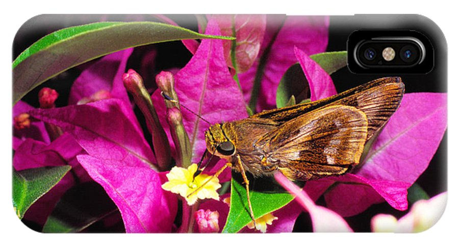 Least Skipper Butterfly IPhone X Case featuring the photograph Least Skipper Butterfly by Thomas R Fletcher