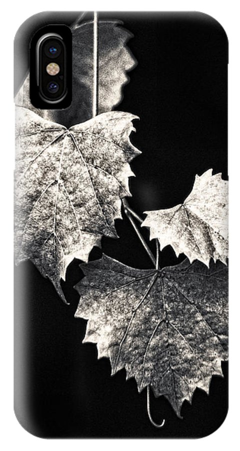 B&w IPhone Case featuring the photograph Leaves by Christopher Holmes