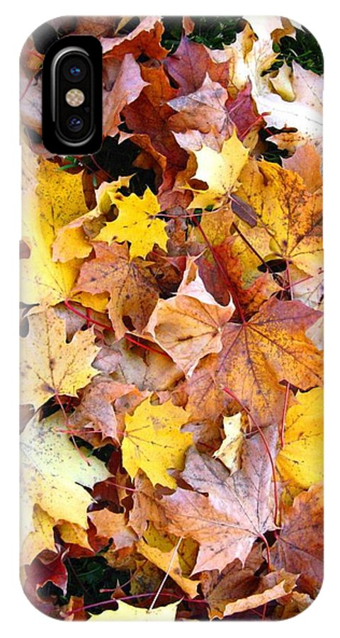 Leaves IPhone X / XS Case featuring the photograph Leaves Of Fall by Rhonda Barrett