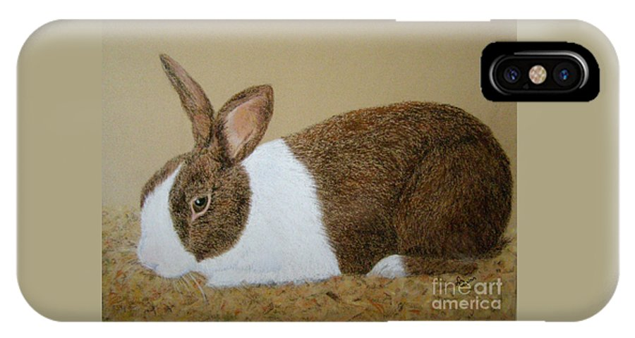 Bunny IPhone X Case featuring the painting Les's Rabbit by Lynn Quinn