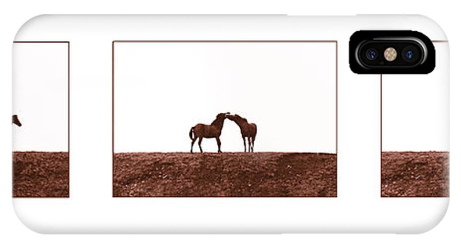 Horse IPhone X Case featuring the photograph Let Me Tell You by Casper Cammeraat