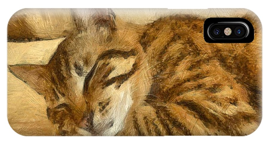 Tabby Cat IPhone X Case featuring the drawing Let Sleeping Cats Lie by Taiche Acrylic Art