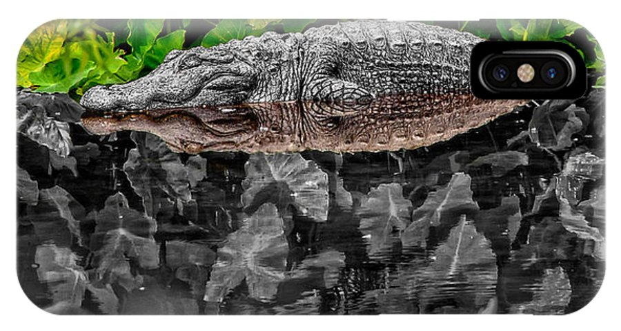 American IPhone X Case featuring the photograph Let Sleeping Gators Lie - Mod by Christopher Holmes