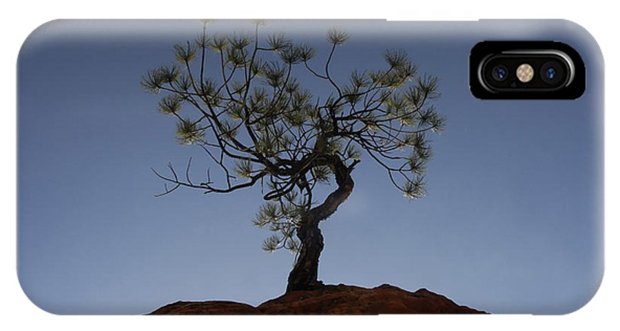 Tree IPhone X Case featuring the photograph Life Force by David Lee Thompson
