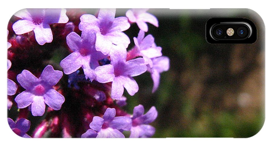 Lilac IPhone X Case featuring the photograph Lilac by Melissa Parks