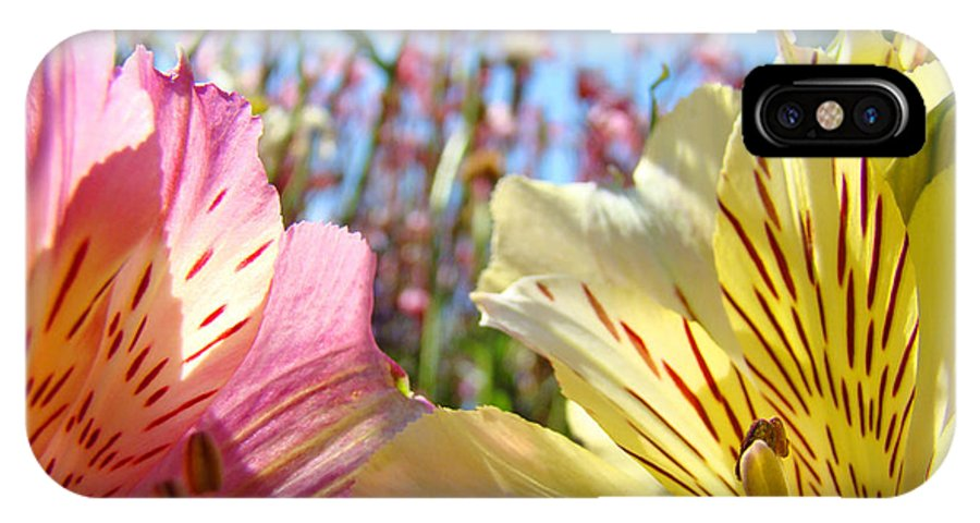 Lilies IPhone X Case featuring the photograph Lilies Pink Yellow Lily Flowers Canvas Art Prints Baslee Troutman by Baslee Troutman