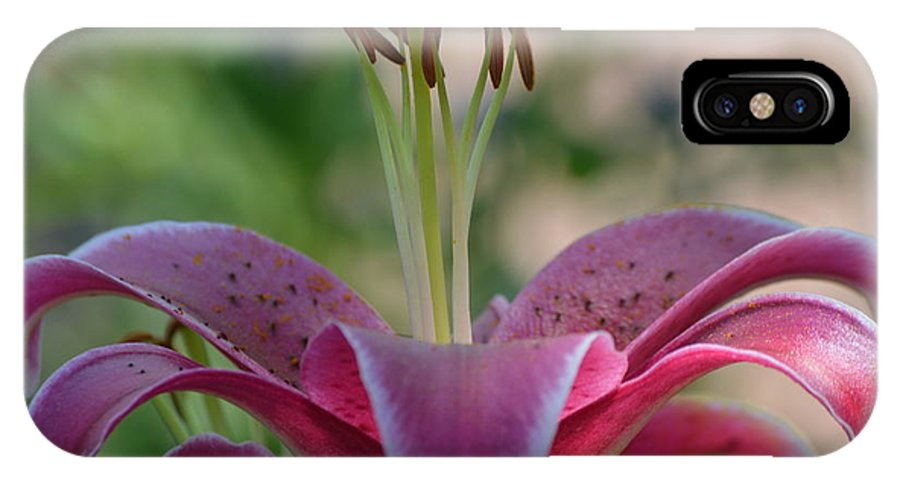 Lilys IPhone X Case featuring the photograph Lily 4 by Brad Kennedy
