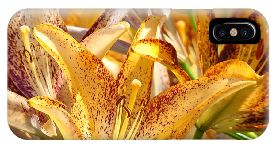 Lilies IPhone X Case featuring the photograph Lily Flower Garden Art Prints Canvas Floral Lilies Baslee Troutman by Baslee Troutman
