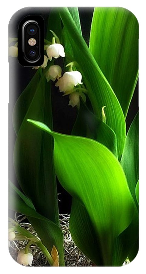 Lily IPhone X Case featuring the photograph Lily Of The Valley by Katie Wing Vigil