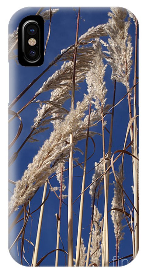 Photography IPhone X Case featuring the photograph Line And Loop by Shelley Jones