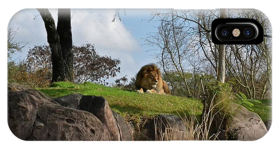 Lion IPhone X Case featuring the photograph Lion Country by Carol Bradley