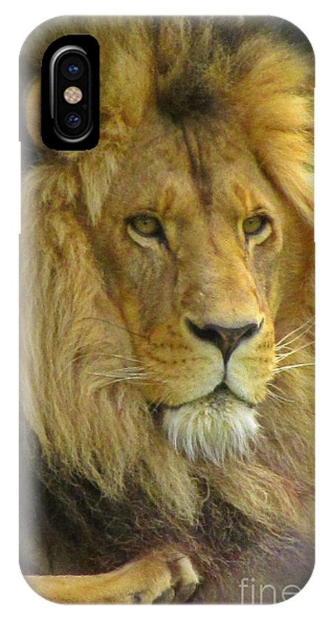 Lion Portrait IPhone X Case featuring the photograph Lion Portrait by Crystal Loppie