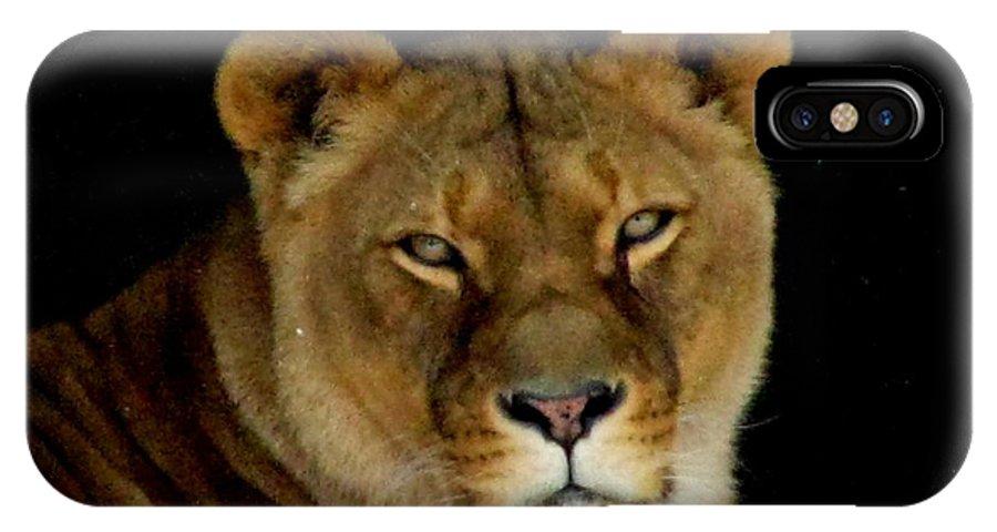 Lion Lioness Cats Big Cat Ohio Rlclough IPhone X Case featuring the photograph Lioness. No.2 by RL Clough