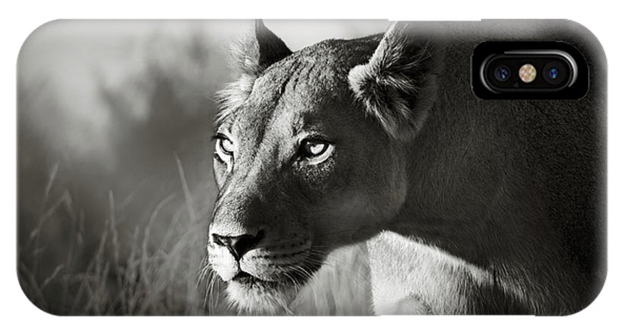 Lioness IPhone X Case featuring the photograph Lioness Stalking by Johan Swanepoel