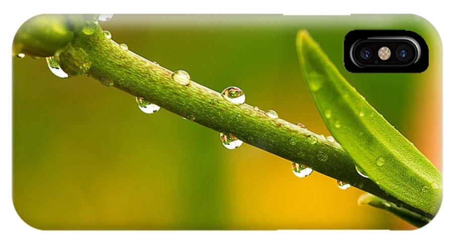 Macro IPhone X Case featuring the photograph Little Drops Of Rain by Amanda Kiplinger