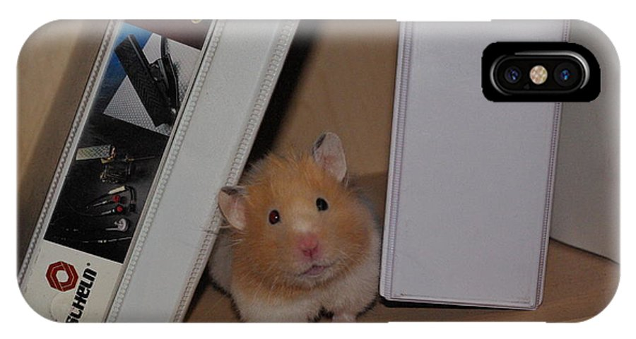 Hamster IPhone X Case featuring the photograph Little Missy Is Watching by Cindy Johnston