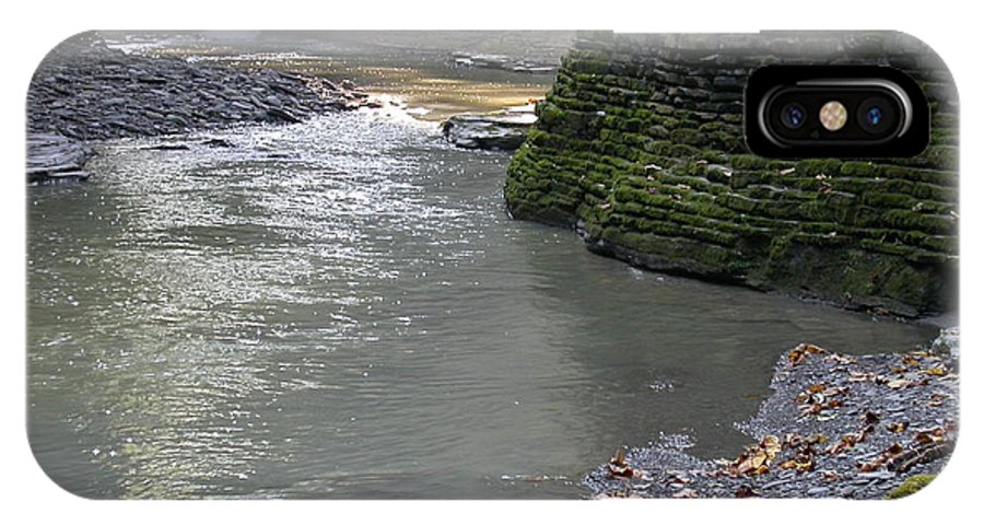 Watkins Glen IPhone X Case featuring the photograph Little Ray Of Sunshine by Linda Murphy