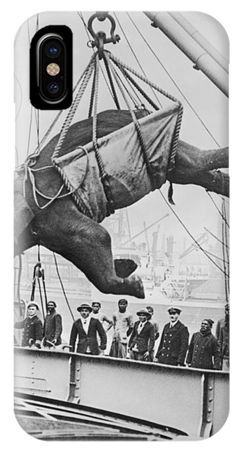 1930 IPhone X Case featuring the photograph Loading Elephant, 1930s by Granger
