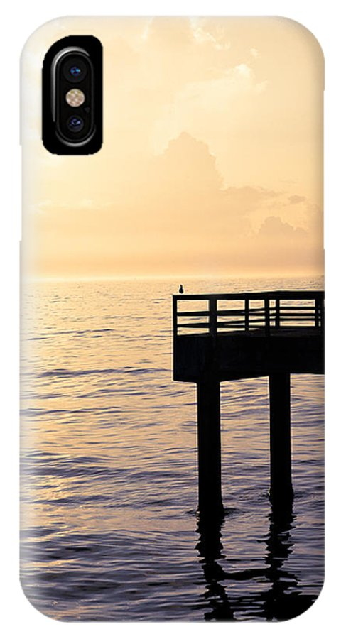 Beach IPhone X Case featuring the photograph Lone Bird At Morning by Marilyn Hunt