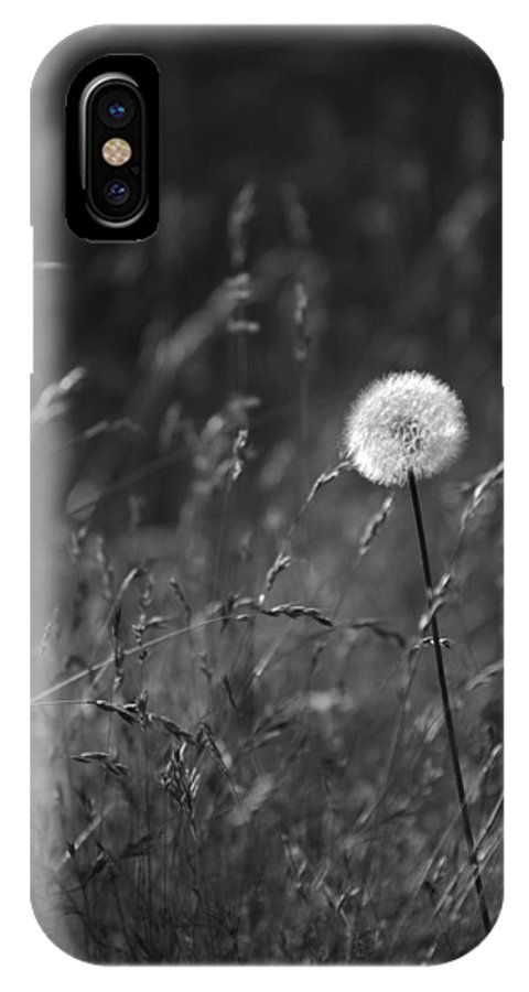 Botanical IPhone X Case featuring the photograph Lone Dandelion Black And White by Jill Reger