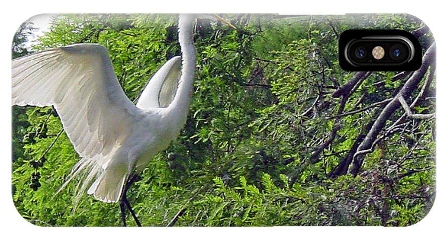 Great White Egret IPhone X Case featuring the photograph Lone Egret by Suzanne Gaff