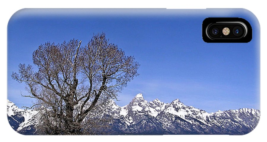 Tree IPhone Case featuring the photograph Lone Tree At Tetons by Douglas Barnett