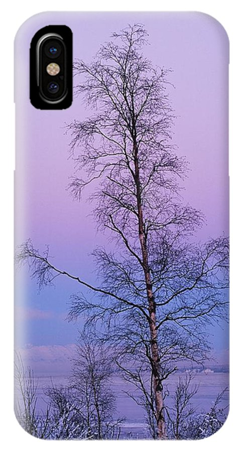 Tree IPhone X Case featuring the photograph Lone Tree At Winter Sunset by Ronnie Glover