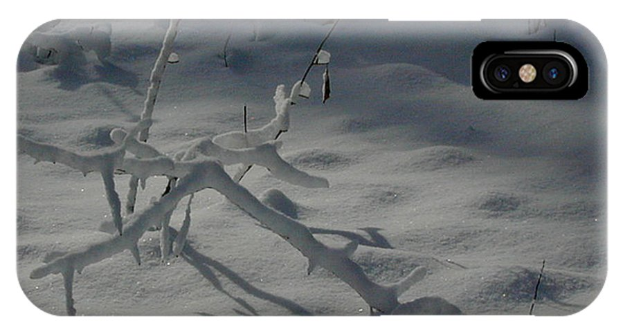 Loneliness IPhone X Case featuring the photograph Loneliness In The Cold by Douglas Barnett