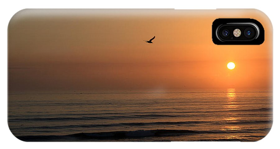 Bird Fly Flight Gull Alone Sun Sunrise Sky Ocean Wave Reflection Nature Golden Gold IPhone X Case featuring the photograph Lonely Flight by Andrei Shliakhau