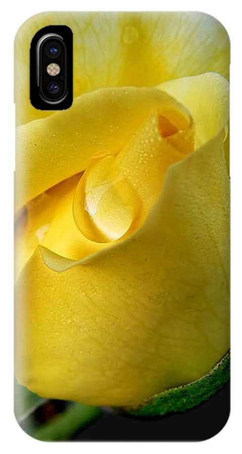 Rose IPhone X Case featuring the photograph Lonely Teardrop Yellow Rose Bud by Jennie Marie Schell