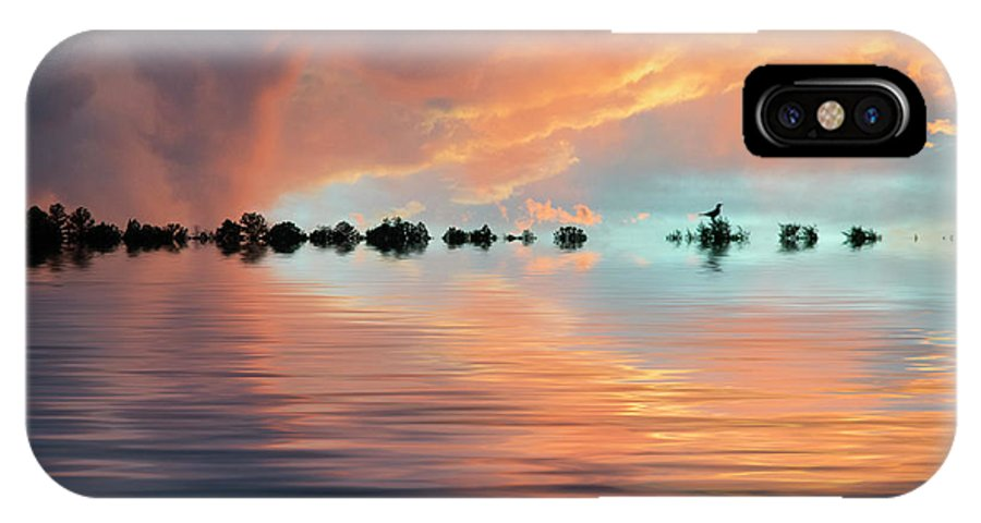 Original Art IPhone X Case featuring the photograph Lonesome Bird by Jerry McElroy